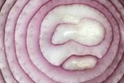 Onion 4