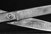 Old Scissors 5