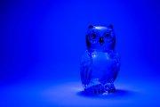 Glass Owl 1