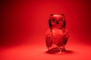 Glass Owl 2