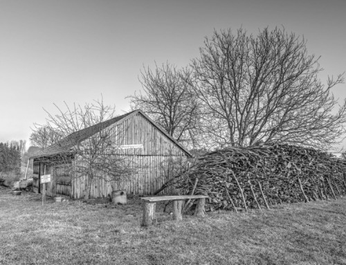 Project 267: Old Hut