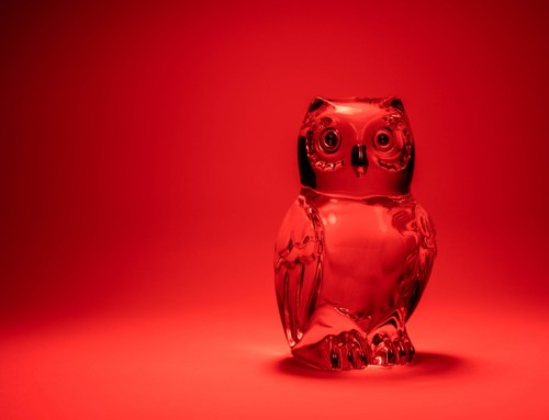 Project 268: Glass Owl